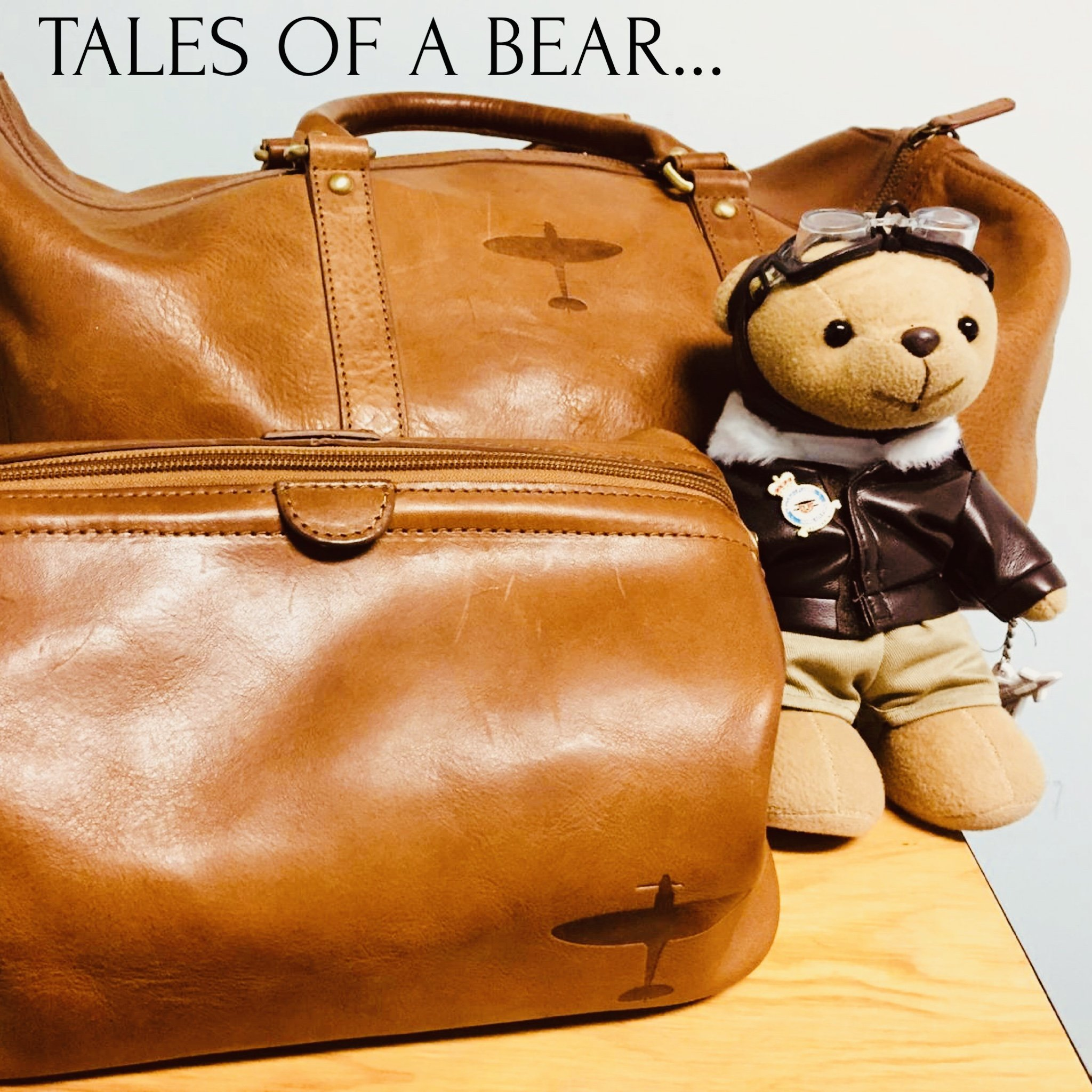 petwood bear with asali spitfire luggage set longest flight